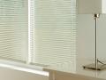 Горизонтальные алюминиевые жалюзи предназначены для регулировки освещенности помещения. Использование дополнительных опций расширяет область применения горизонтальных алюминиевых жалюзи, позволяя использовать их на наклонных окнах или устанавливать на окна ПВХ без сверления рамы. Они практичны, функциональны, просты и удобны в монтаже и дальнейшей эксплуатации.