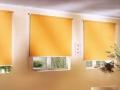 рулонные-шторы